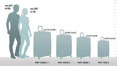 AmazonBasics Suitcase 20-Inch Black FAST